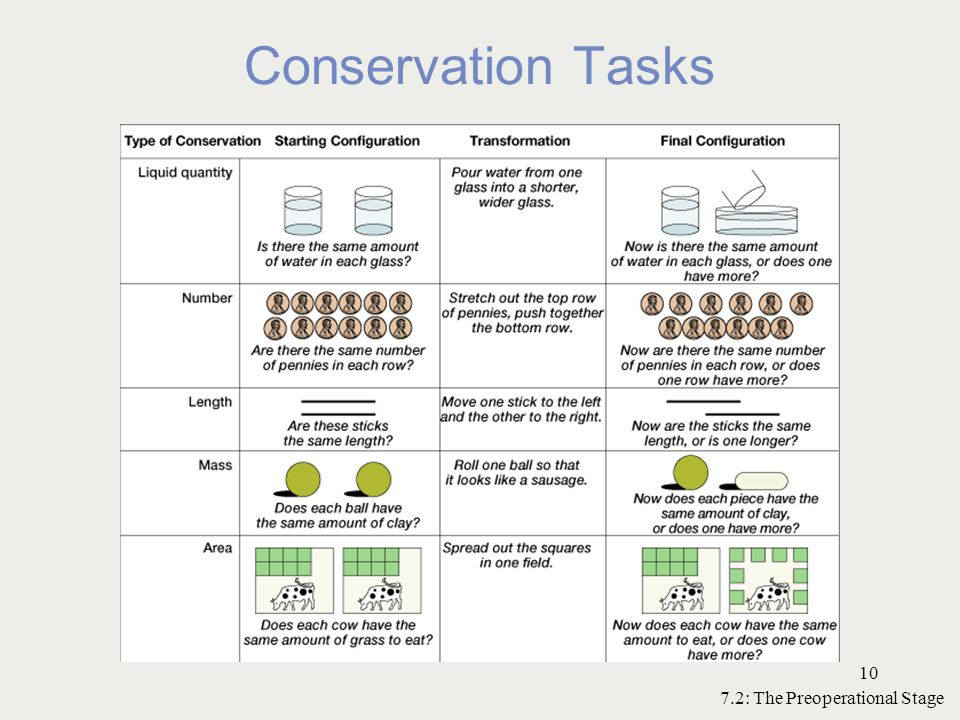 Conservation Tasks 7.2: The Preoperational Stage