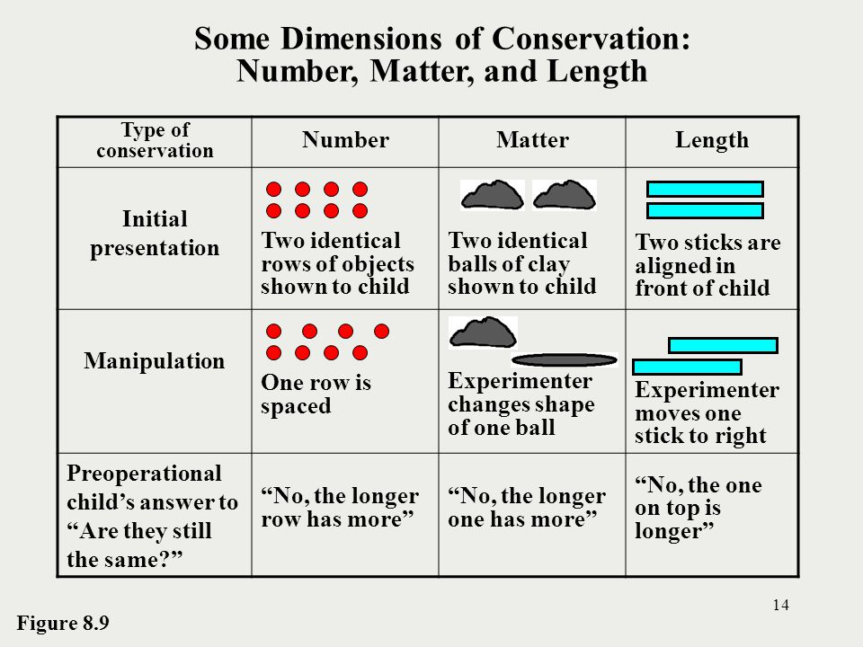Some Dimensions of Conservation: Number, Matter, and Length