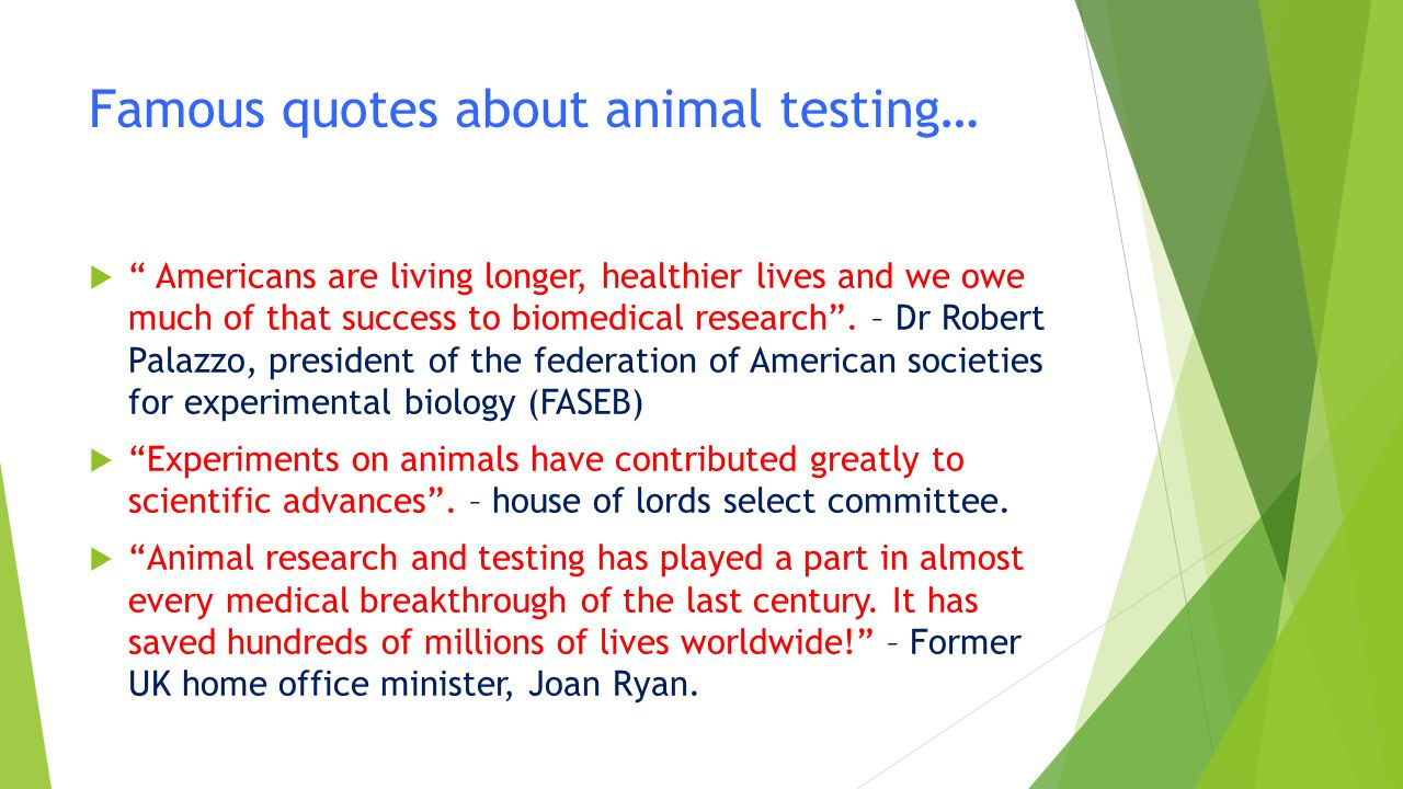 reasons for animal testing ppt video online download