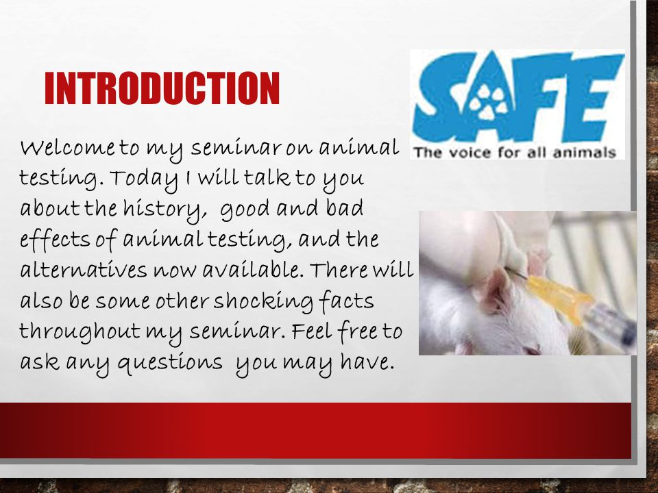 the history and effects of animal testing 3 days ago  although humans often benefit from successful animal research, the  a long  history of safe human usage is advocated instead of testing on animals (3)   and human tissues and cells have been used to examine the effects.