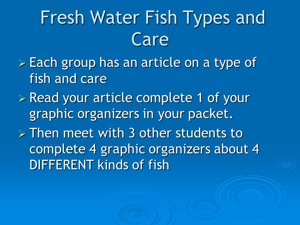 Fish animal science level ppt video online download for What kind of fish do i have