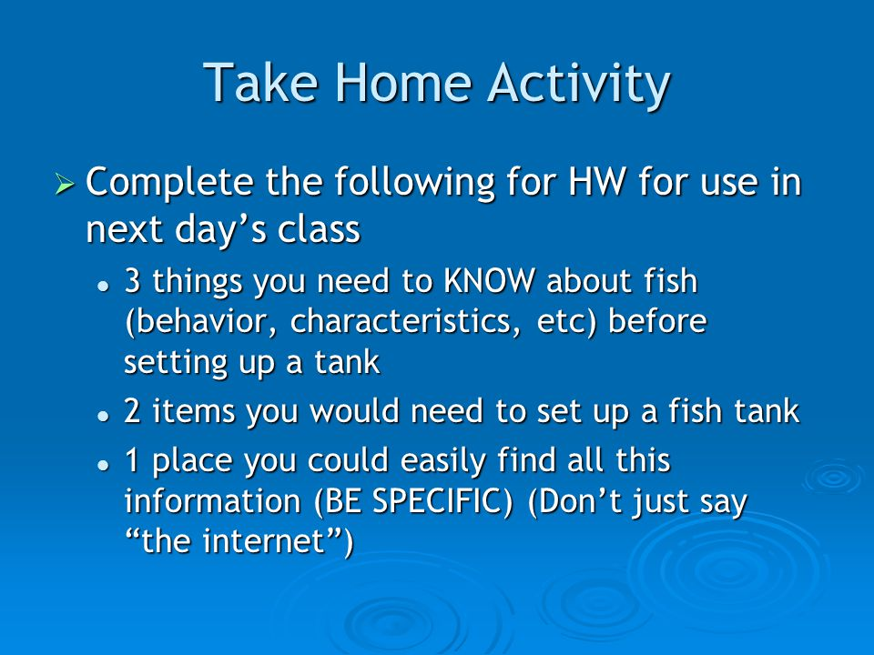 Fish animal science level ppt video online download for What do you need for a fish tank