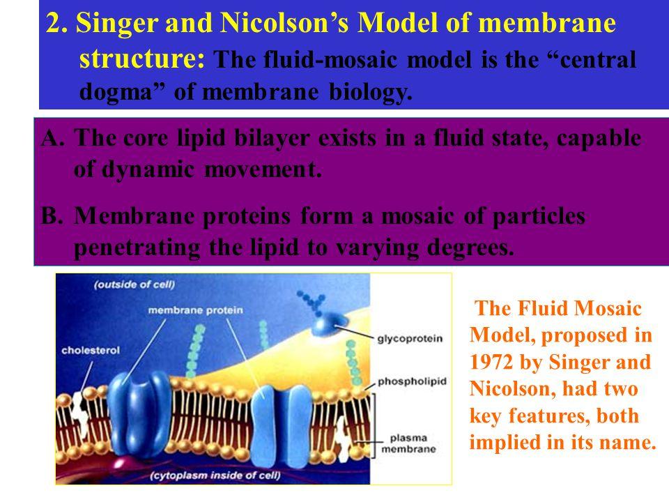 fluid mosaic model of membrane structure pdf