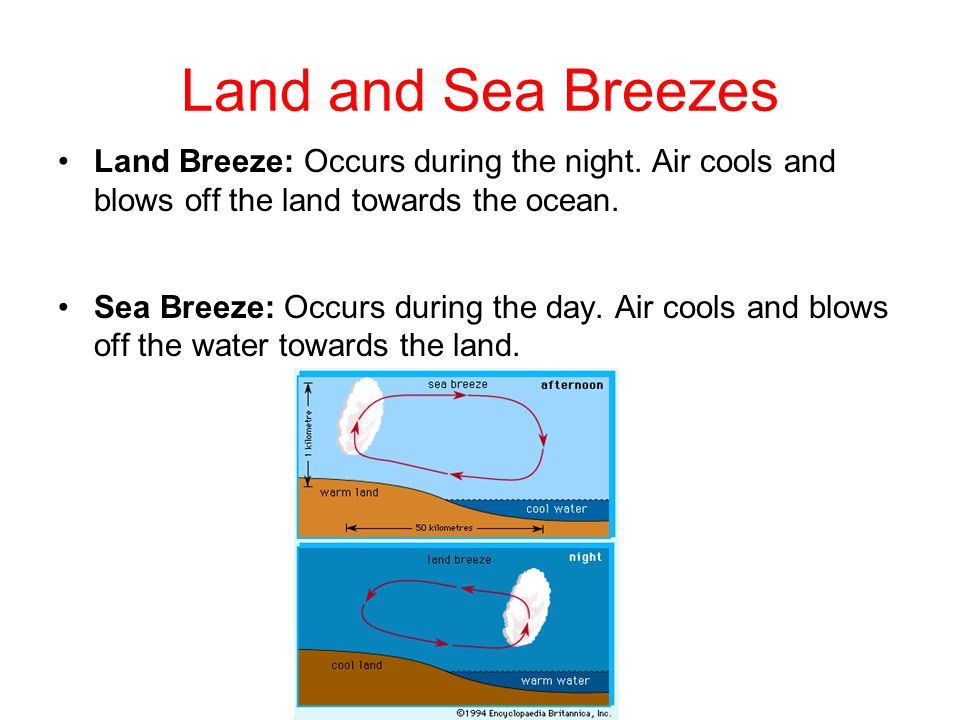 Land and Sea Breezes Land Breeze: Occurs during the night. Air cools and blows off the land towards the ocean.