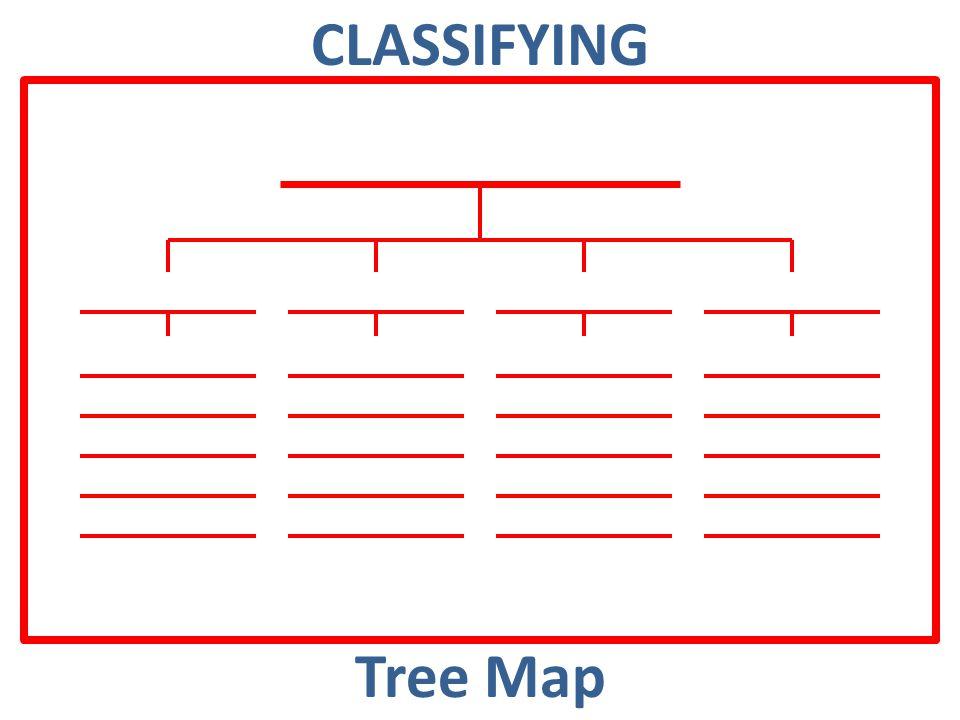CLASSIFYING Tree Map