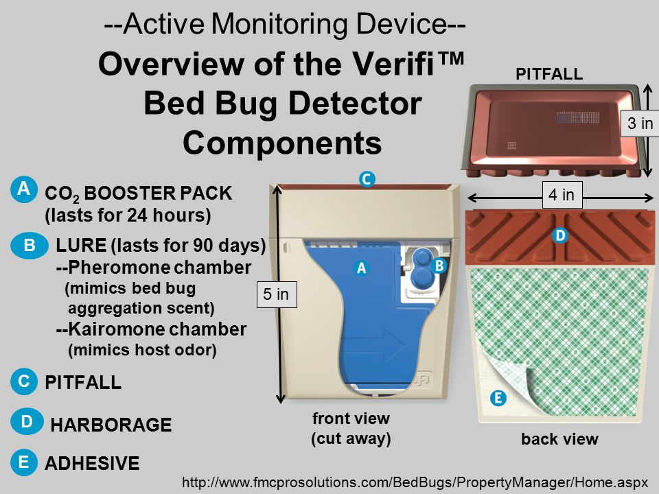 bugs new beds traps bed detector for bug ebay buggy s pack itm glue early