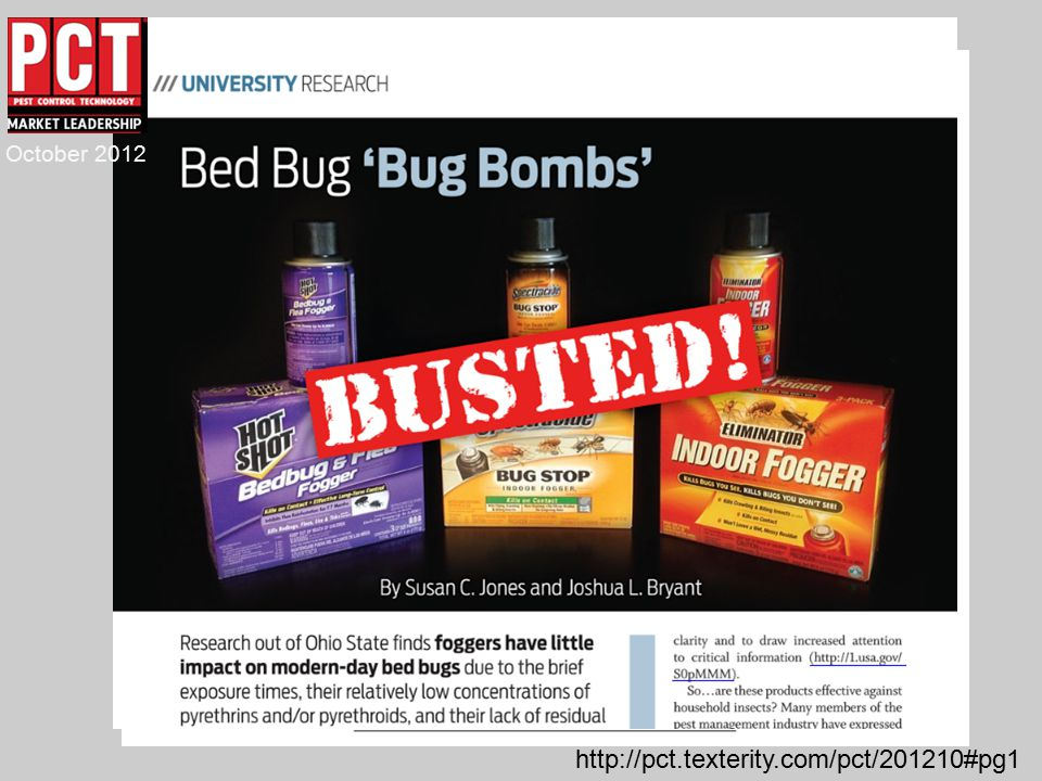 Raid Or Hotshot For Bed Bugs