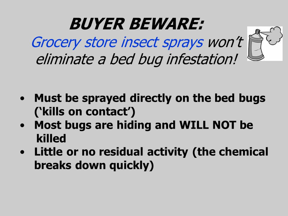 Proof Bed Bug Spray Reviews 28 Images Proof Bed Bug Spray In Depth Review Pest Strategies