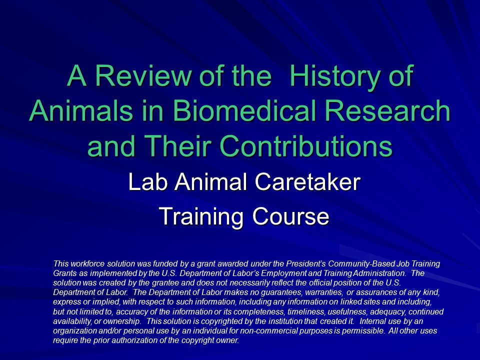 laboratory animal caretaker