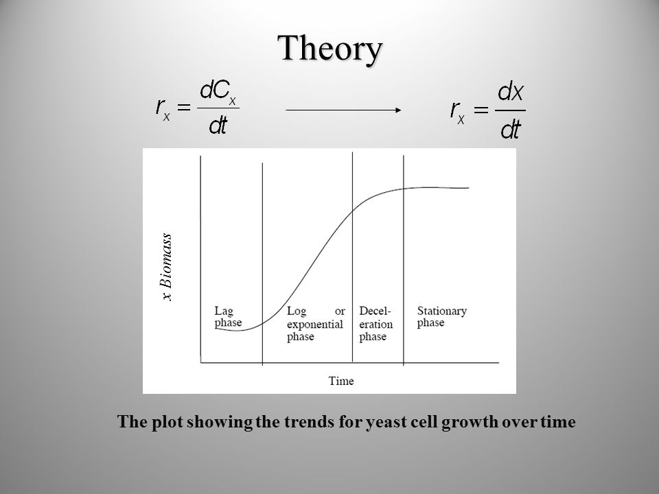 Theory The plot showing the trends for yeast cell growth over time