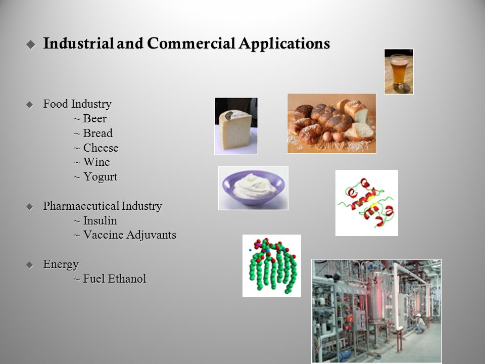 Industrial and Commercial Applications