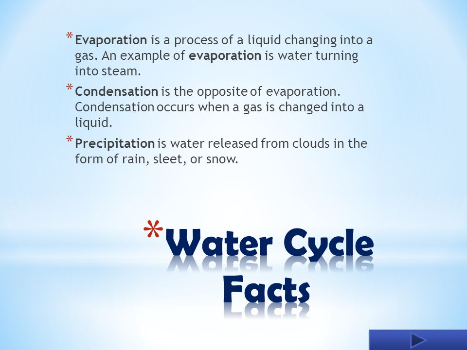 The Water Cycle Cherlyn Akiens Ppt Download
