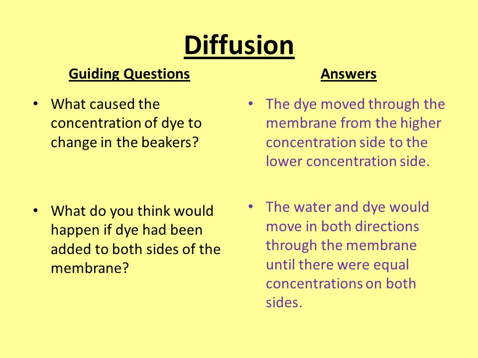 passive transport guiding questions answers ppt video online download. Black Bedroom Furniture Sets. Home Design Ideas
