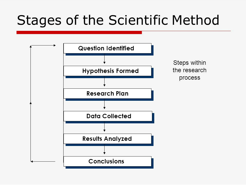 Stages of the Scientific Method