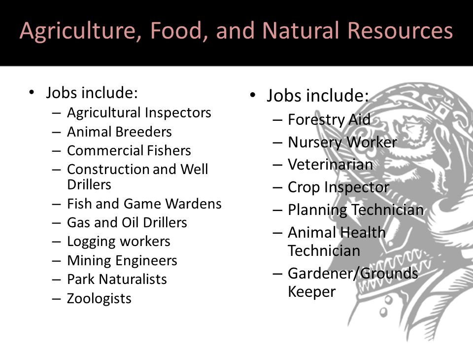 Warm up career interest survey ppt video online download for Fish and game jobs