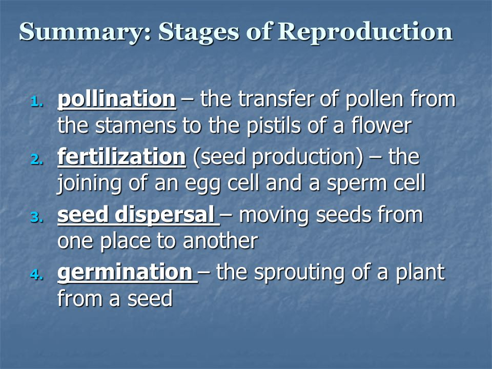 Summary: Stages of Reproduction