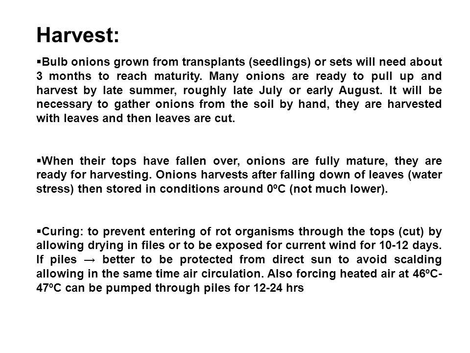 Harvest: