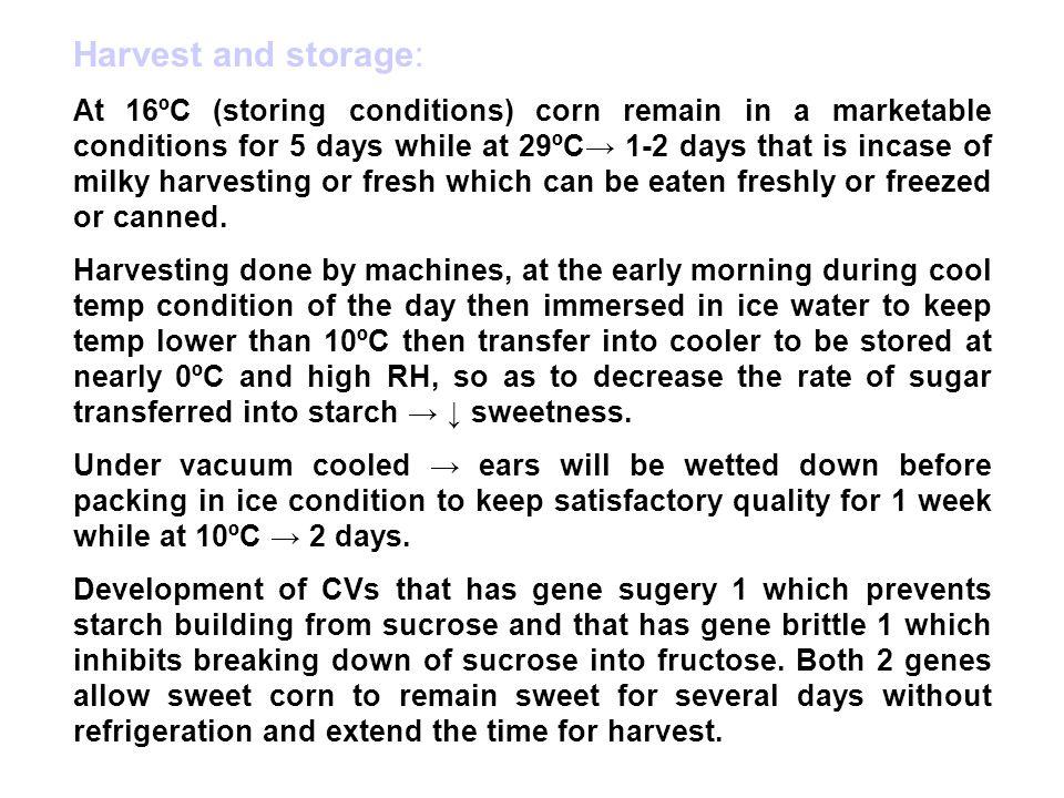 Harvest and storage: