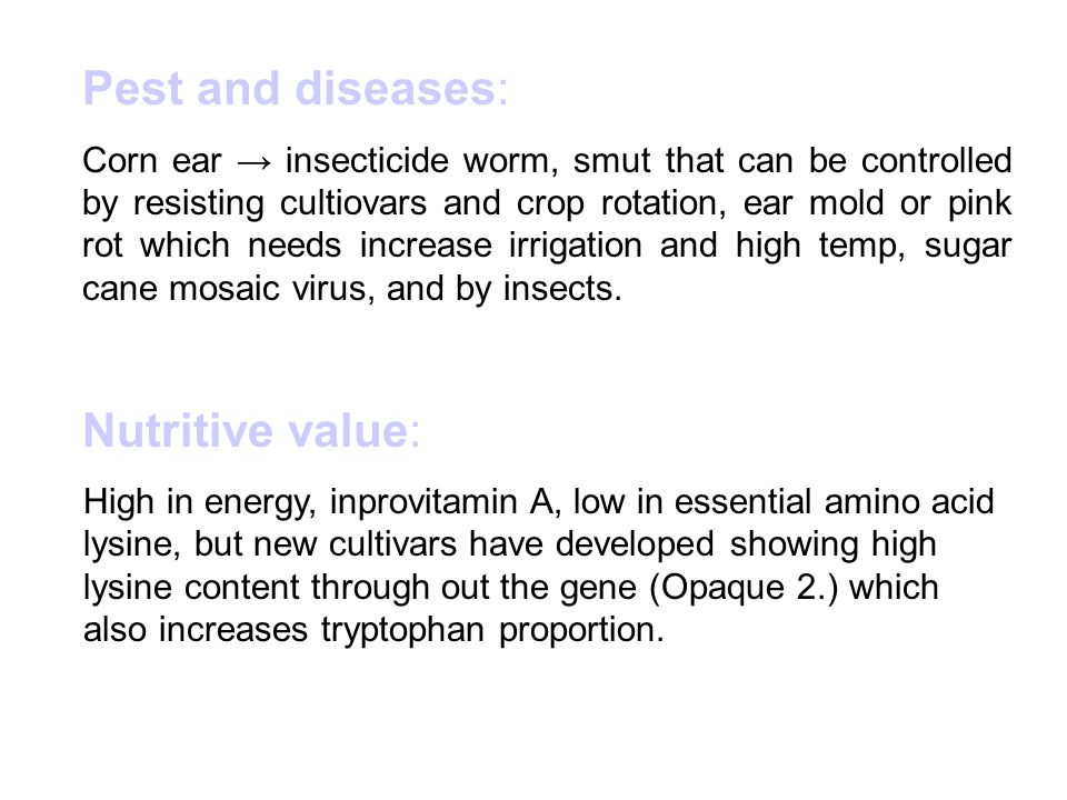 Pest and diseases: Nutritive value: