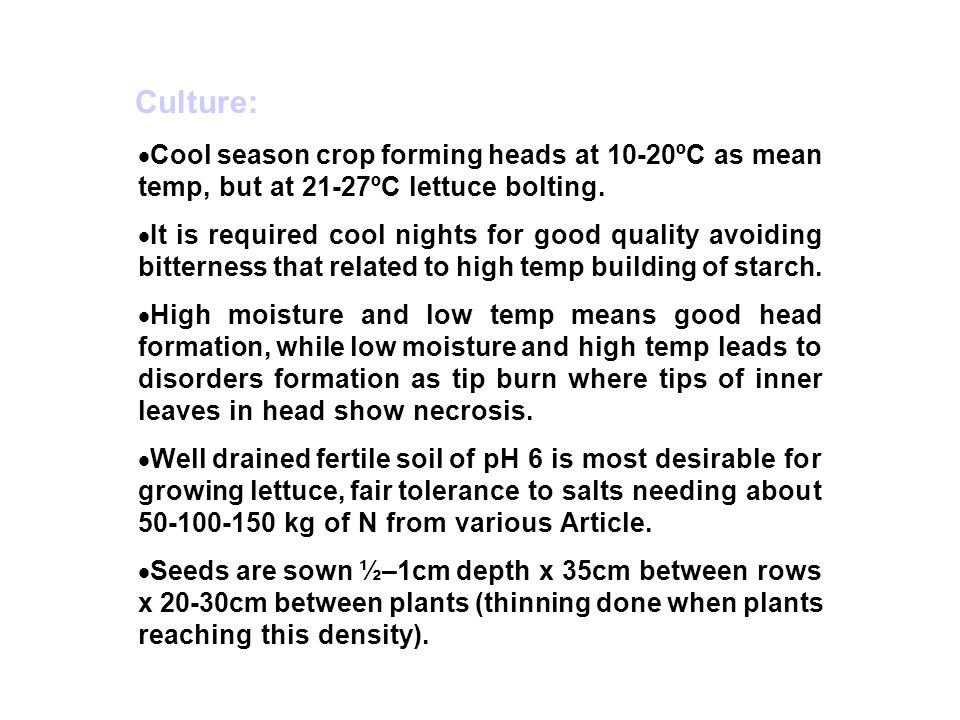 Culture: Cool season crop forming heads at 10-20ºC as mean temp, but at 21-27ºC lettuce bolting.