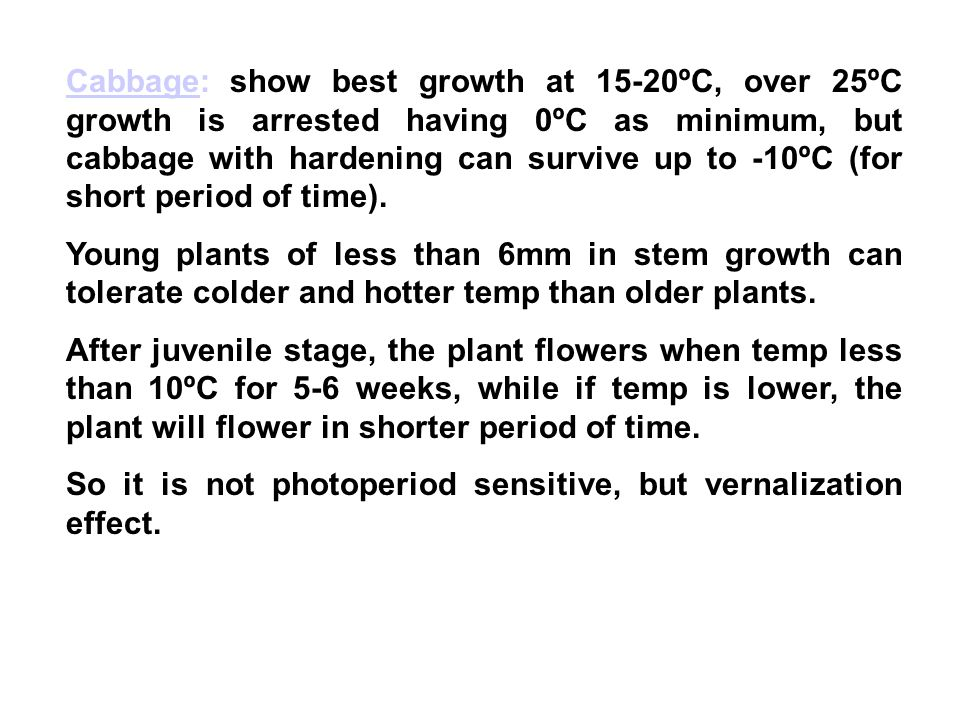 Cabbage: show best growth at 15-20ºC, over 25ºC growth is arrested having 0ºC as minimum, but cabbage with hardening can survive up to -10ºC (for short period of time).