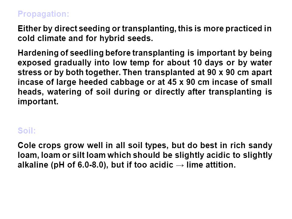 Propagation: Either by direct seeding or transplanting, this is more practiced in cold climate and for hybrid seeds.