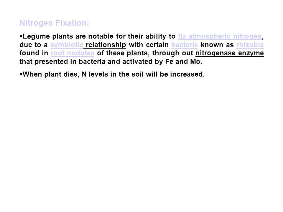 Nitrogen Fixation: