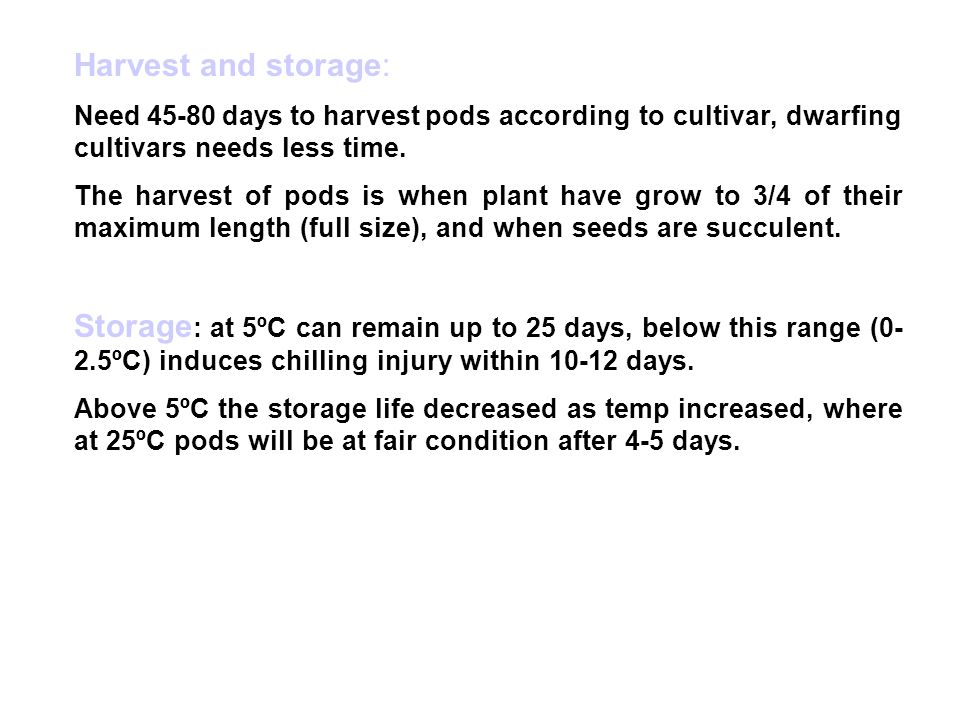 Harvest and storage: Need 45-80 days to harvest pods according to cultivar, dwarfing cultivars needs less time.