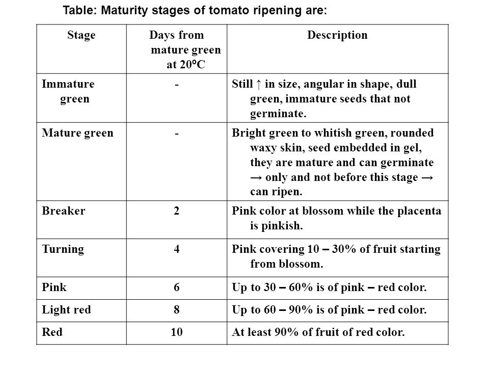 Days from mature green at 20ºC