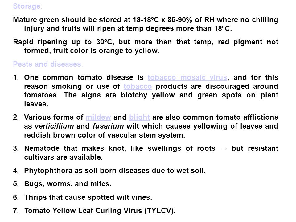 Storage: Mature green should be stored at 13-18ºC x 85-90% of RH where no chilling injury and fruits will ripen at temp degrees more than 18ºC.
