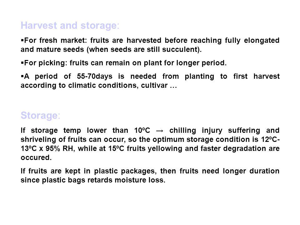 Harvest and storage: Storage: