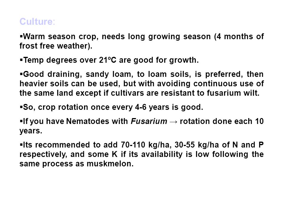 Culture: Warm season crop, needs long growing season (4 months of frost free weather). Temp degrees over 21ºC are good for growth.