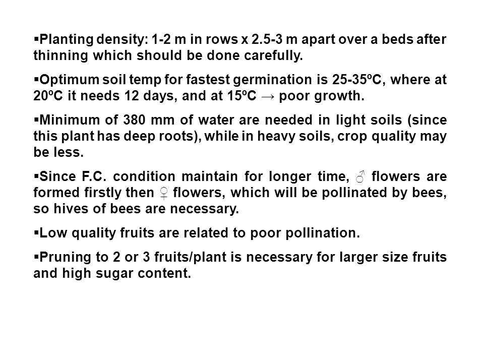 Planting density: 1-2 m in rows x 2