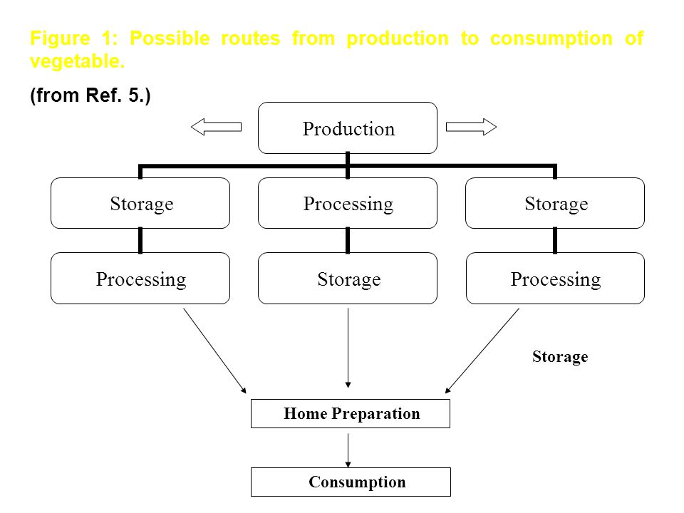 Figure 1: Possible routes from production to consumption of vegetable.