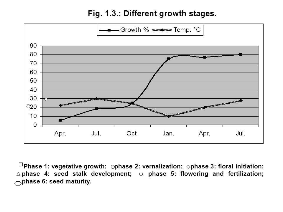 Fig. 1.3.: Different growth stages.