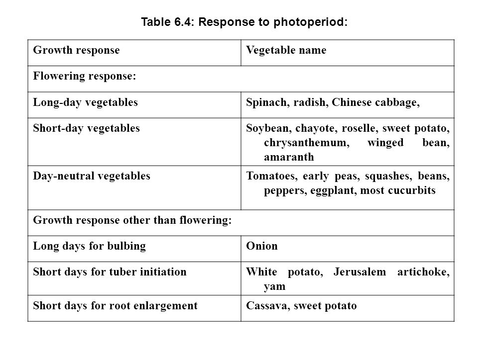Table 6.4: Response to photoperiod: