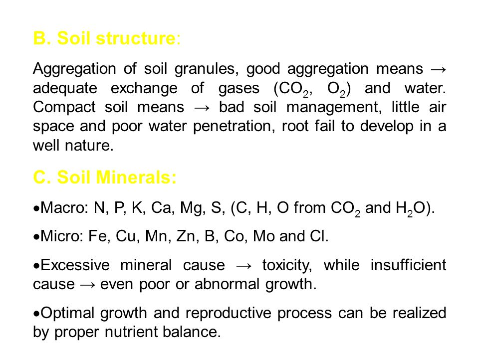 B. Soil structure: C. Soil Minerals: