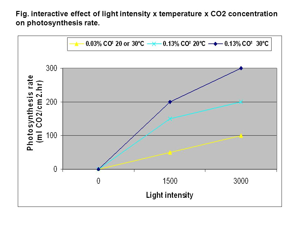 Fig. interactive effect of light intensity x temperature x CO2 concentration on photosynthesis rate.