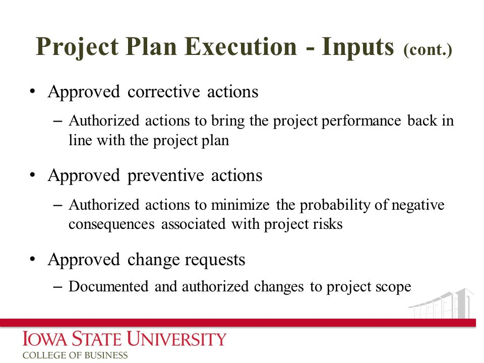 Project Plan Execution - Inputs (cont.)