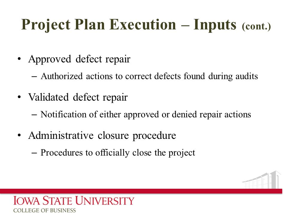 Project Plan Execution – Inputs (cont.)