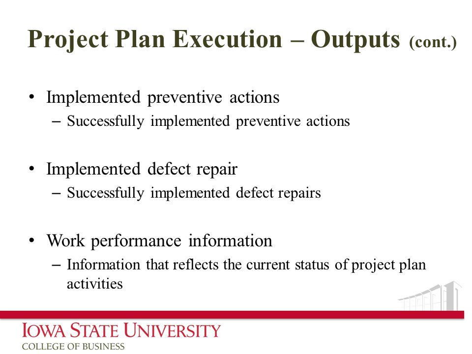 Project Plan Execution – Outputs (cont.)