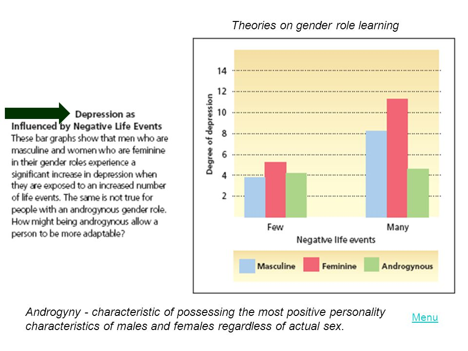 Theories on gender role learning