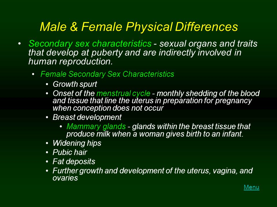 Male & Female Physical Differences