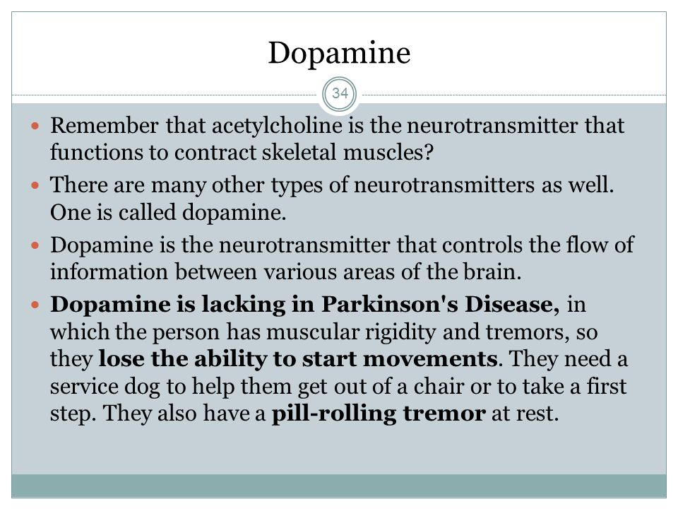 Dopamine Remember That Acetylcholine Is The Neurotransmitter That Functions To Contract Skeletal Muscles on Muscles Of The Nervous System Diseases