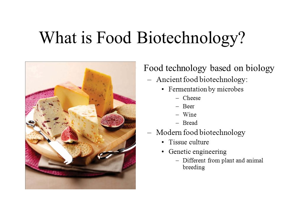 food biotechnology Some examples of biotechnology include human gene therapy, genetically modifying plants and changing the genes of bacteria biotechnology helps improve crops so they produce more, healthier produce.