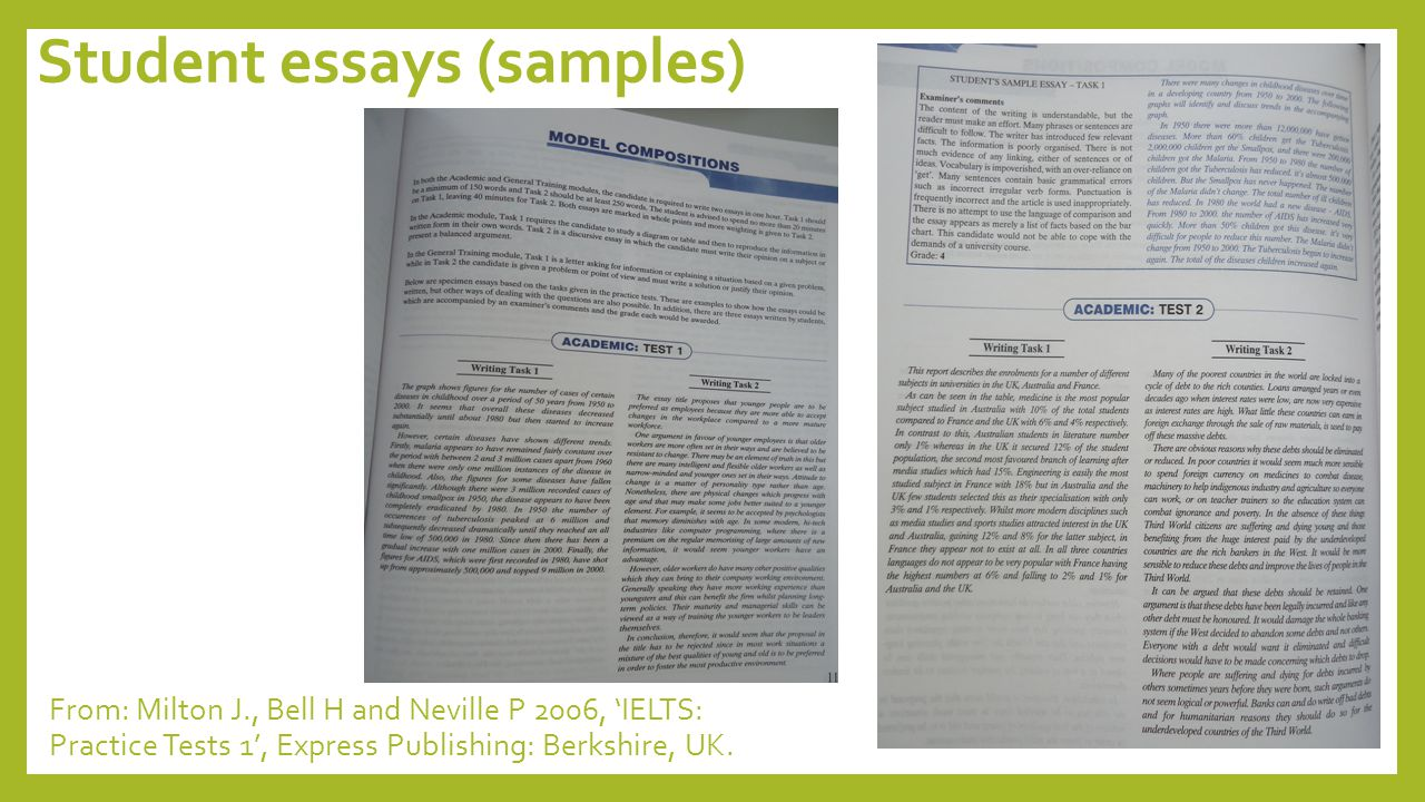 Student essays (samples)