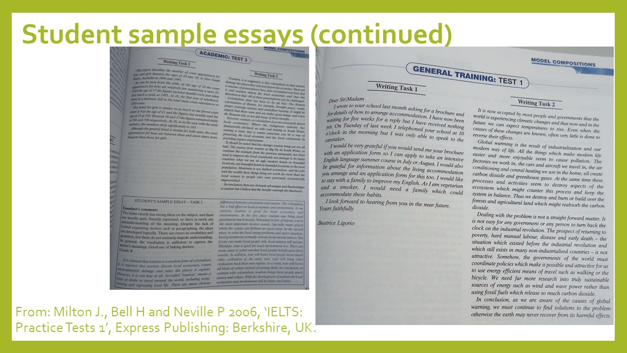 Student sample essays (continued)