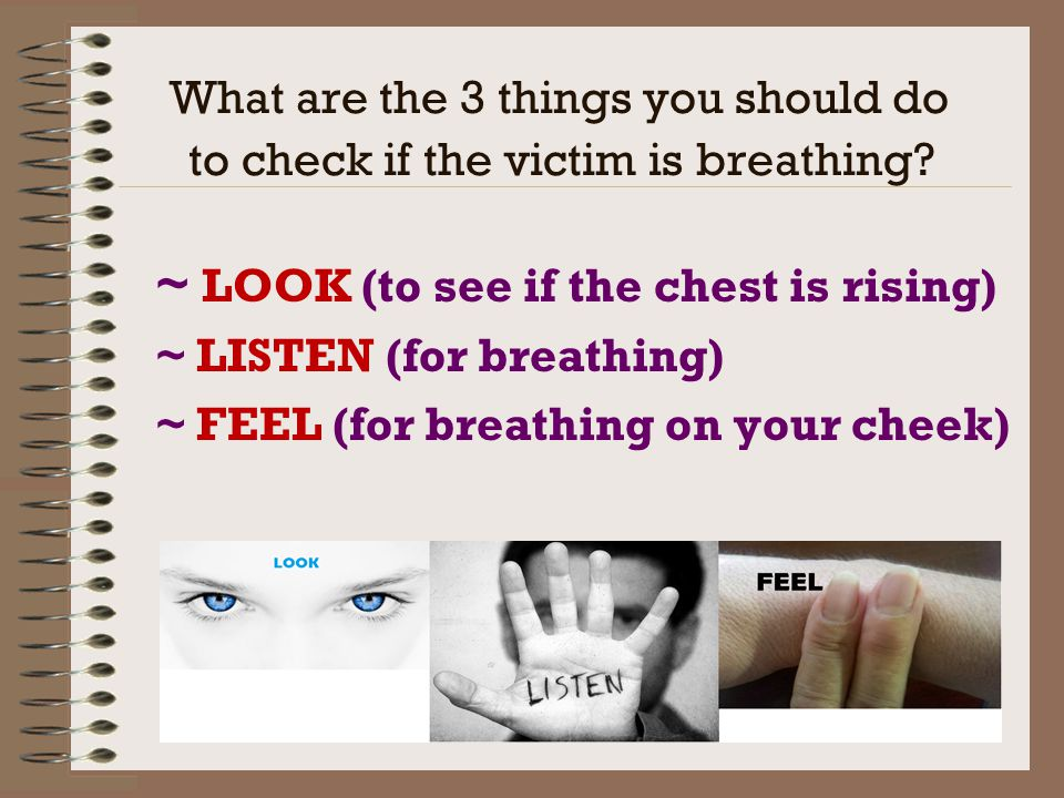 What are the 3 things you should do to check if the victim is breathing