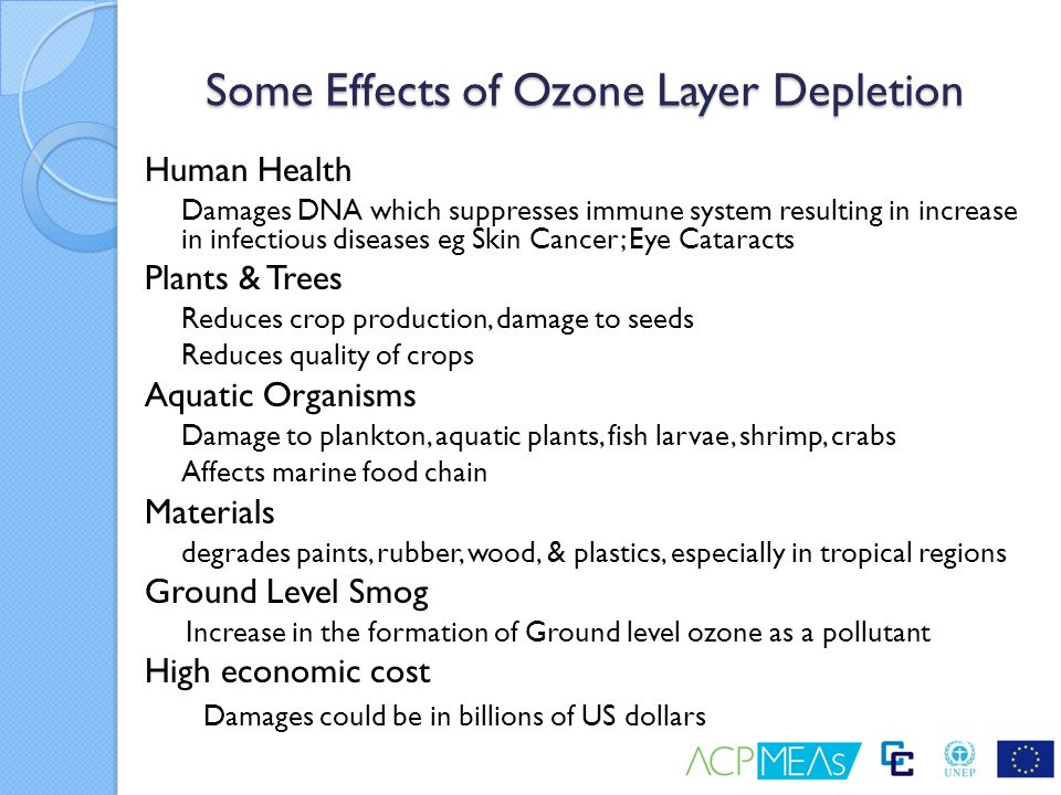 ON SUBSTANCES THAT DEPLETE THE OZONE LAYER - ppt video ...