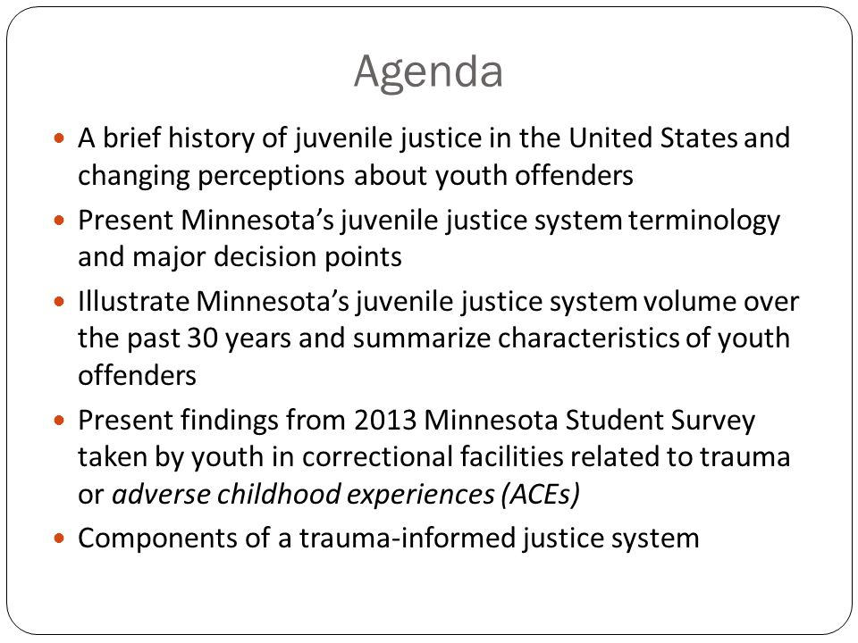 history and characteristics of juvenile gangs 102 juvenile crime facts crime and drug abuse are rated first and third as the biggest worries among americans according to a recent survey for the conference board, a research institute.